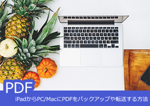 iPadからPC/MacにPDFをバックアップや転送する方法